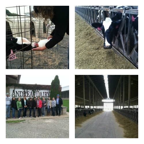 Andreas Farm Collage