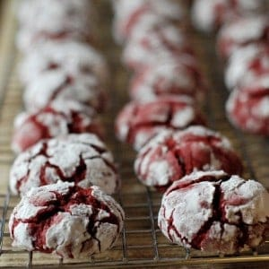 Sweet little red velvet crinkle cookies filled with mini chocolate chips! Just in time for the holidays and your Christmas cookie platter! | www.lemonsforlulu.com