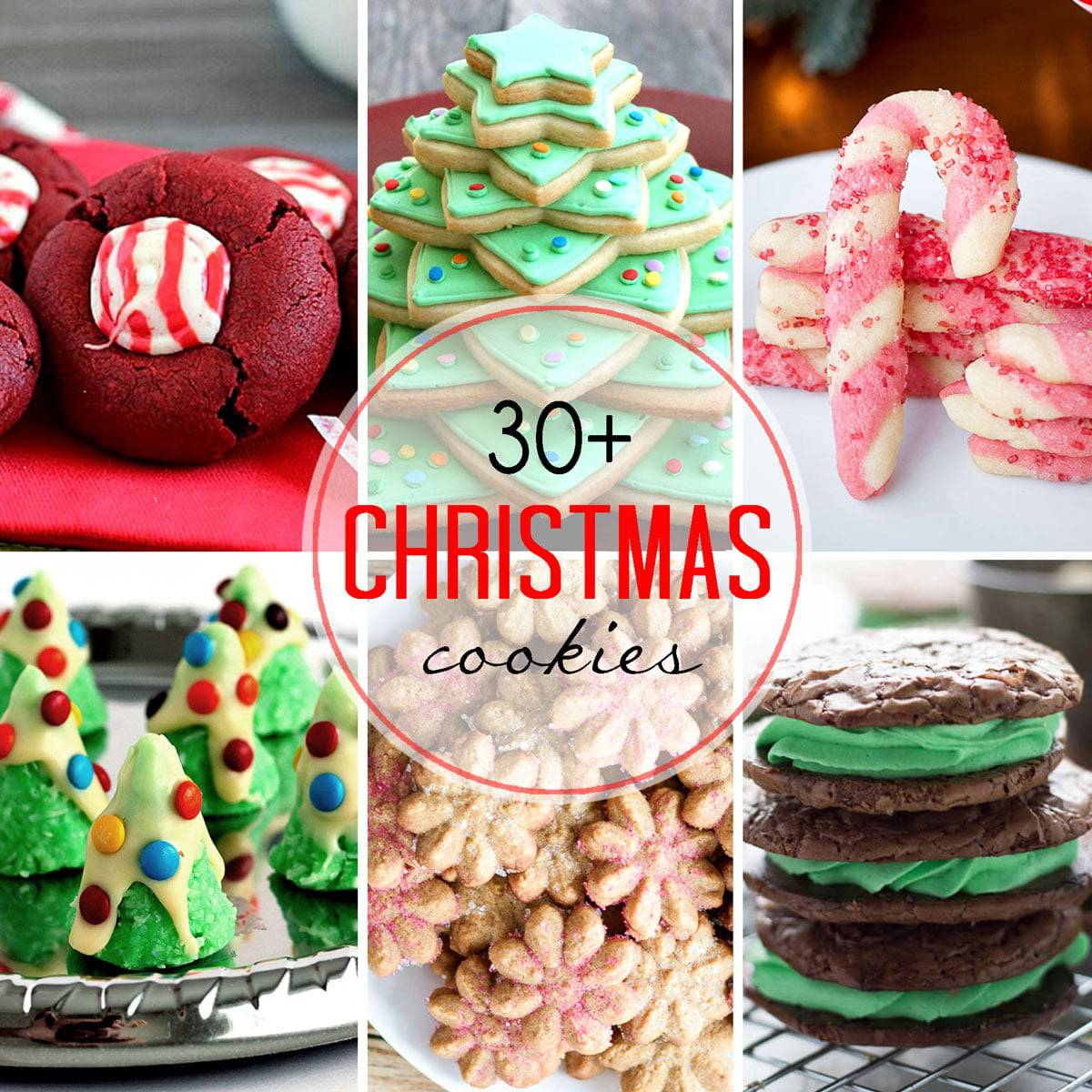 30 christmas cookie recipes for your cookie tray all you need for the season - Easy Christmas Cookie Recipes