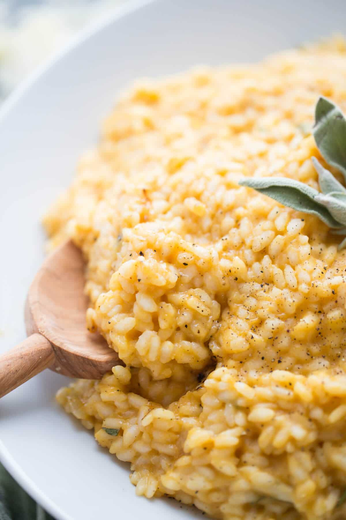 Easy Pumpkin Risotto with Italian Sausage - LemonsforLulu.com