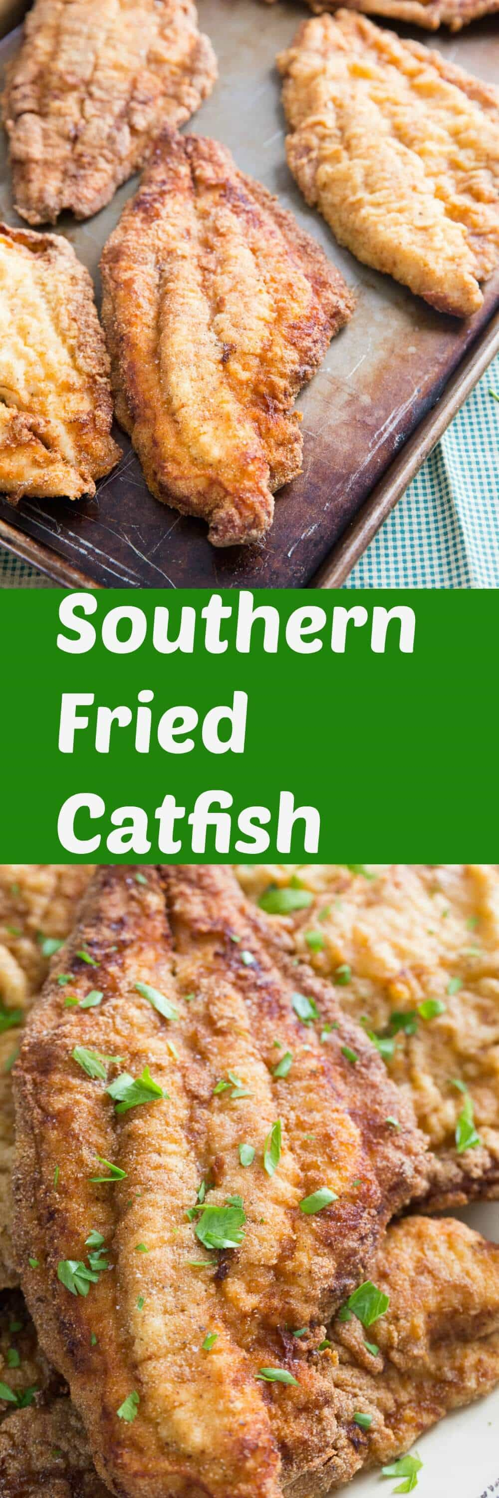 Who loves fried catfish? This southern fried catfish recipe meets all the requirements of a good catfish recipe! It is breaded for crispiness and has just the right amount of seasoning! You are going to love it!