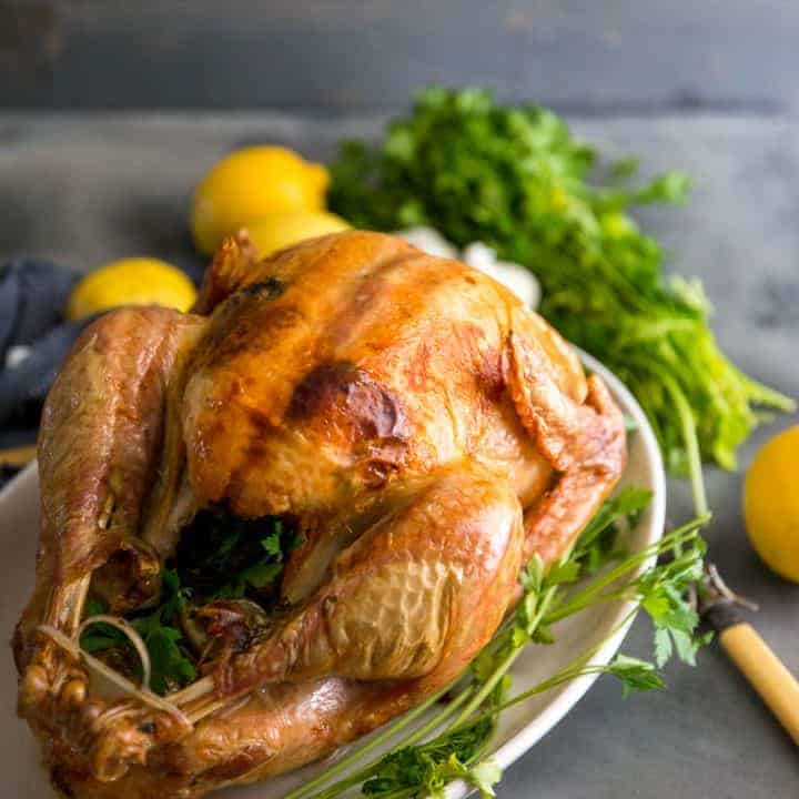 Greek Roasted Turkey Recipe- Tips On Roasting The Best Turkey